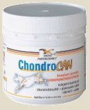 Chondrocan