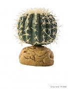 ExoTerra Barrel Cactus