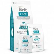 BRIT Care GF Adult Salmon & Potato