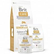 BRIT Care GF Senior Salmon & Potato