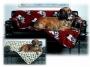 Fleecová deka Doggy Comfort - černá s bílou tlapkou